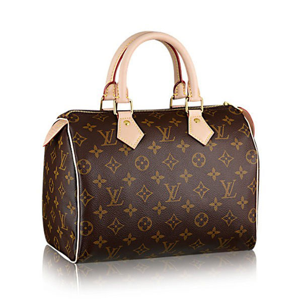 Louis Vuitton Speedy 25 M41109