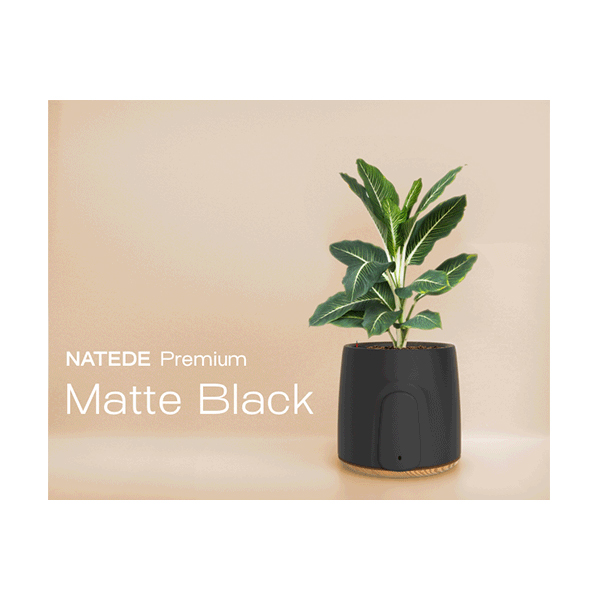 NATEDE: the Amazing Smart Natural Air Purifier